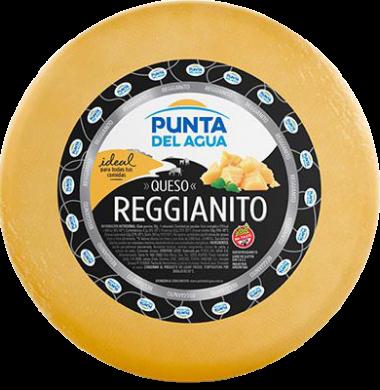 PUNTA AGUA queso regianito
