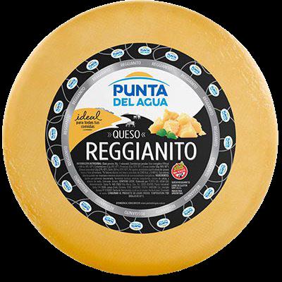 PUNTA DEL AGUA queso reggianito